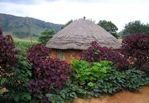Svaziland Vizesi