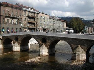 Bosna Hersek Vizesi