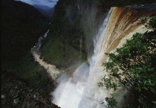 Guyana Vizesi