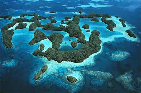Mikronezya Vizesi